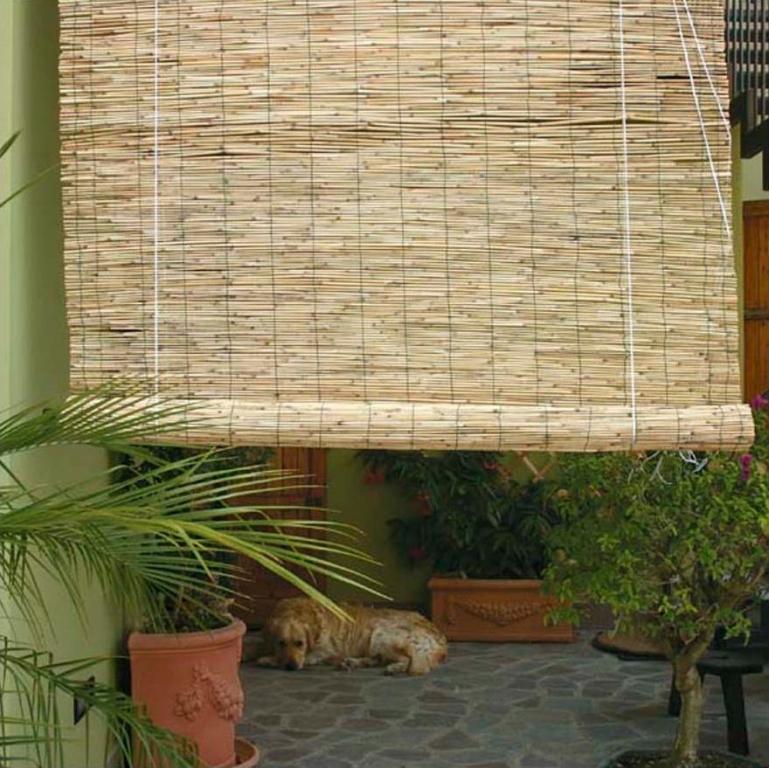 Arelle in bamb con carrucola 200x300 cm for Arelle ombreggianti